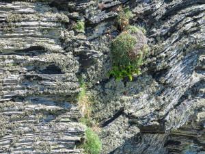 Rocks near Boscastle, Cornwall, July 2014
