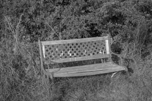 Landbeach bench, August 2016