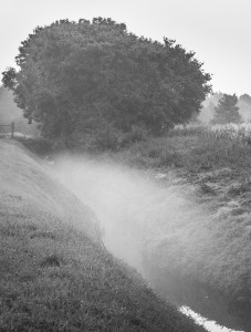 beach-ditch-landbeach-cottenham-cambs-161010