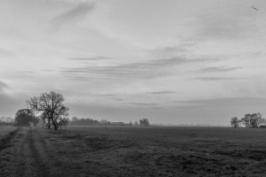landbeach-161214-1